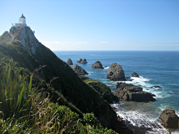 NZ_Südinsel_Nugget_Point